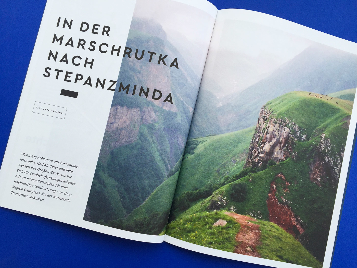 Fonts In Use Volkswagen Stiftung Magazin Corporate Publisher Territory 19 Cera Pro Thesis
