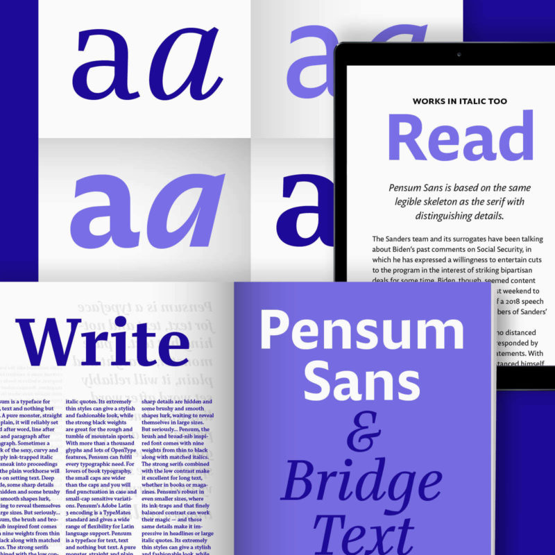 Bridge Text Pensum Sans Collection 1